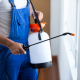 مكافحة حشرات المنزل